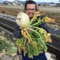 【農業ブログ第一回】日本の農業の実態を知るため、高知県の農家のご支援を始めます。
