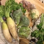 【農業ブログ第9回】規格外野菜を購入していただける方を5組、募集します。