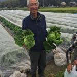 【農業ブログ第14回】農薬を使わないほうがきれいな野菜ができると言っている  農家「山下農園」さんを取材しました。