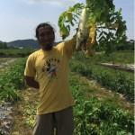 【農業ブログ第15回】元ダンサーから農家へ転身、農家「りぐるVege」さんを  取材しました。